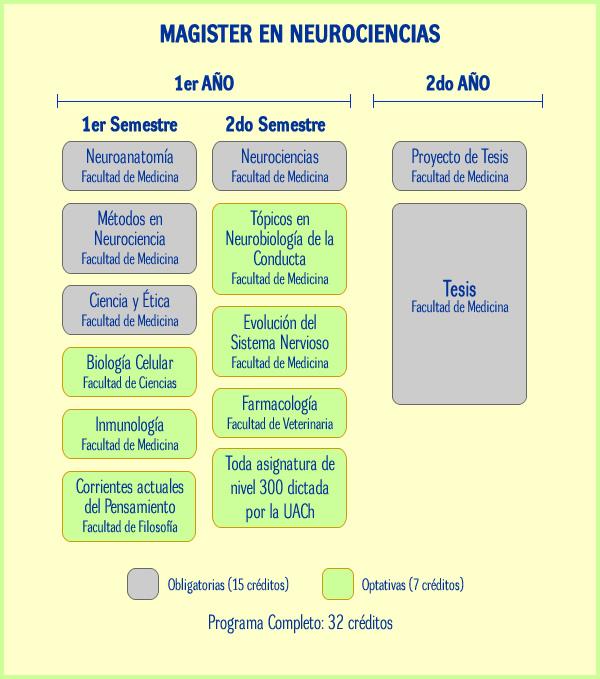 plan de estudios magister en neurociencias