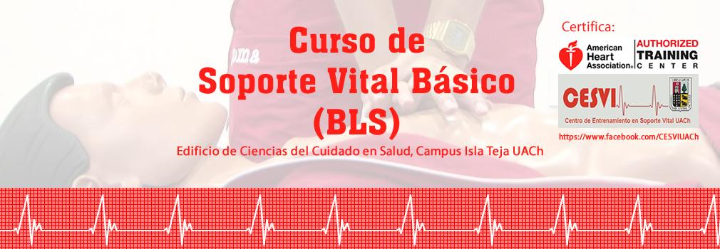 slide_curso_soporte_vital01_2019