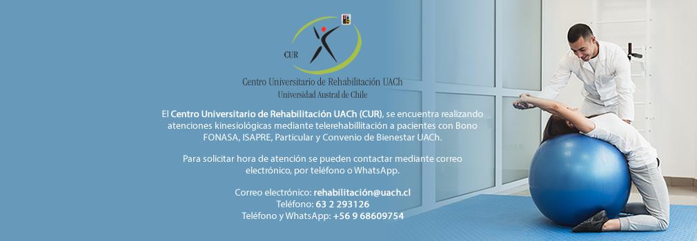 slide_cur_uach2020_02