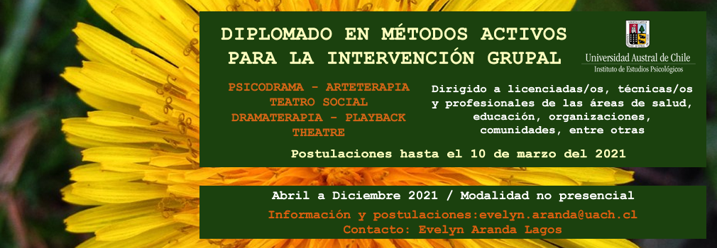 slide_dip_intervencion_grupal02